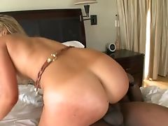Black Guys Fuck Big Booty Briella Bounce